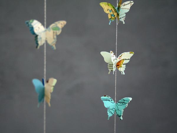 atlas_butterfly4