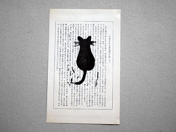 cat_japan1