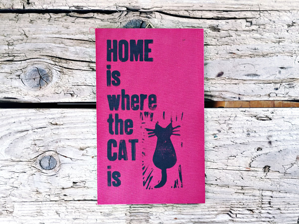 homecat1