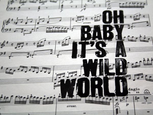 wildworld3