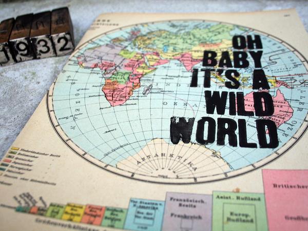wildworld_politisch32_3